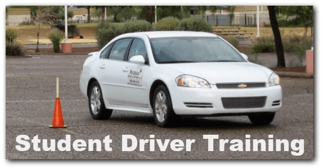 teeneager and student driver training